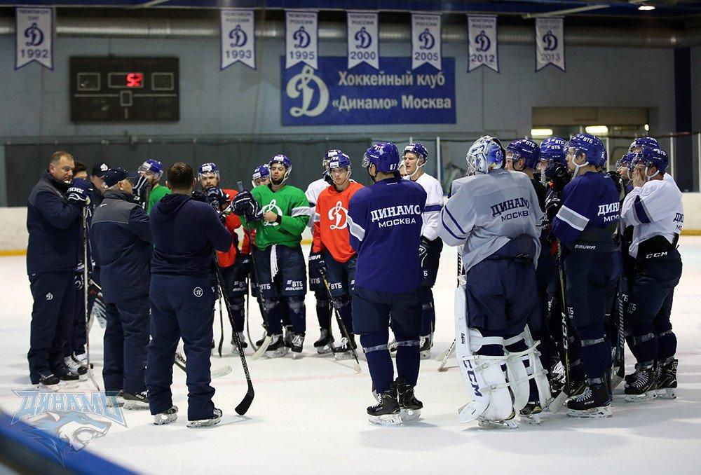 Хоккейный клуб динамо москва руководство ночной клуб волоколамск